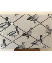 Notice Board by 'JackLanson'- Ducks